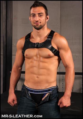 Mr. S Leather Centurion Harness Black Small / Medium