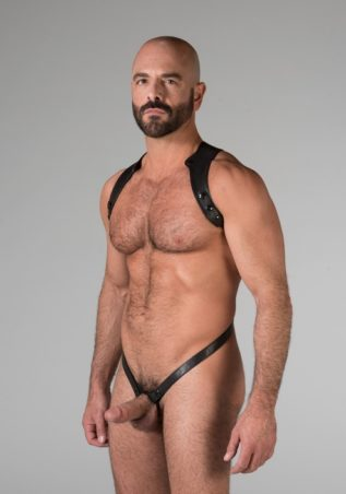 665 Leather Spartan Harness Black Large