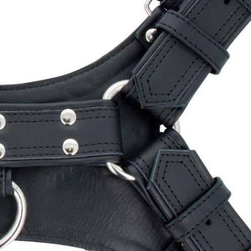 Titus Handler Harness Black Medium