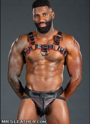 Mr. S Leather Bulldog Harness Piped Black Small / Medium