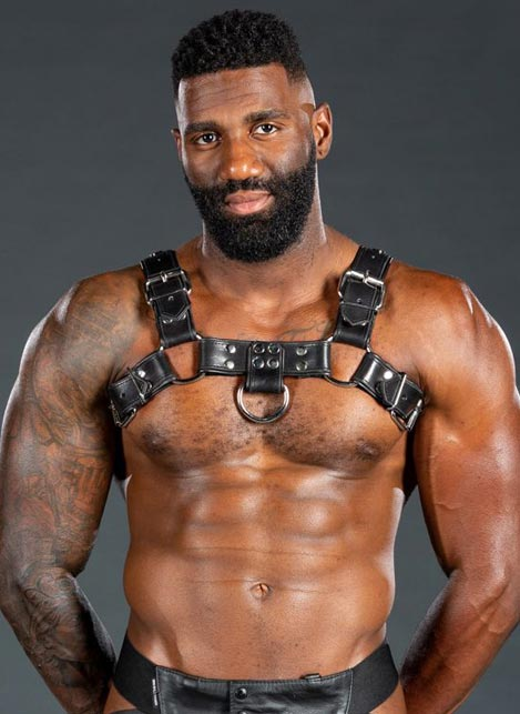 Mr. S Leather Bulldog Harness Piped Black Small / Medium