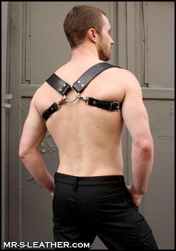 Mr. S Leather Suspender & Harness Combo