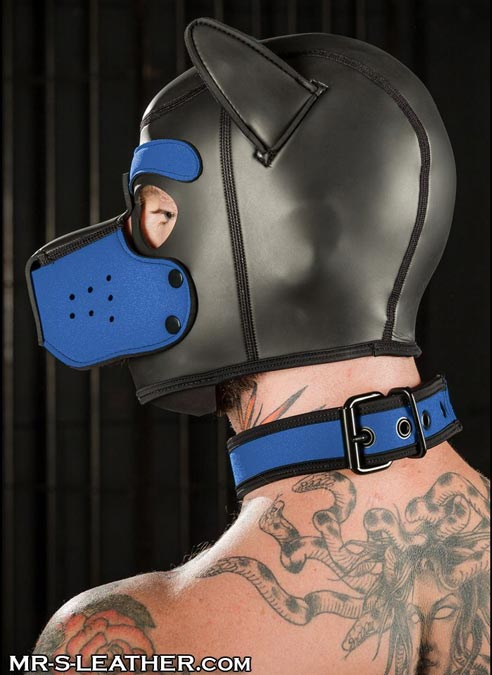 Mr. S Neoprene Puppy Hood Cobalt blue Small