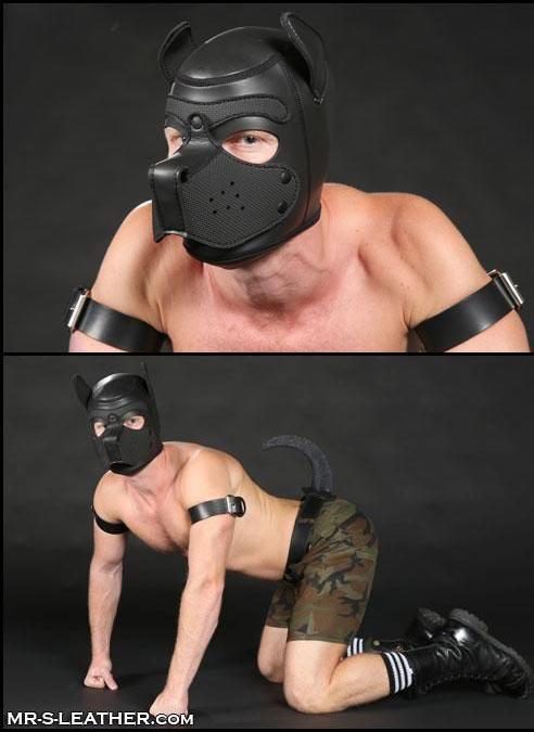 Mr. S Neoprene Puppy Hood Black Medium