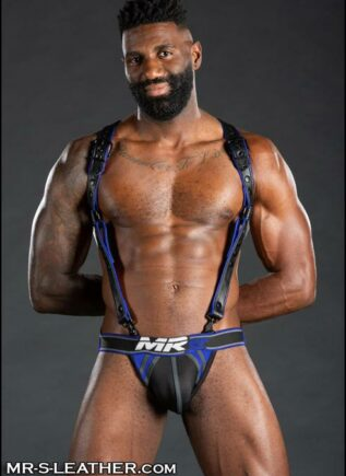 Mr. S Nitro Jockstrap Grey Large