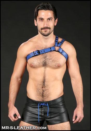 Mr. S Leather Slingshot Tri-Harness Blue Small / Medium