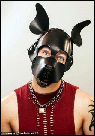 Mr. S Leather WOOF! Muzzle Black One size