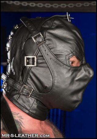 Mr. S Leather Asylum Hood Black