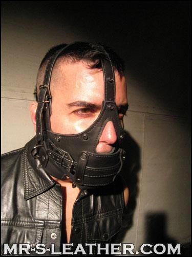 Mr. S Leather Bishop Head Harness Black