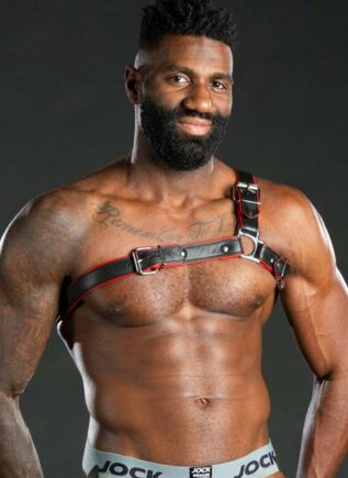 Mr. S Leather Three Point Shoulder Harness Black Large/Extra large