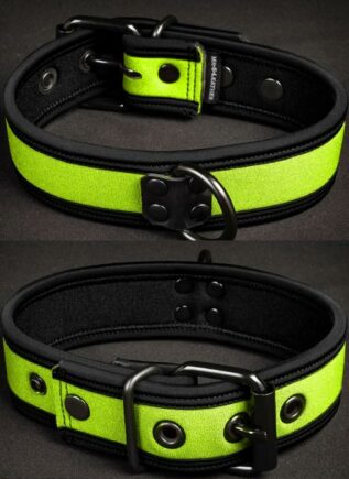 Mr. S Neoprene Puppy Collar Lime Small/Medium