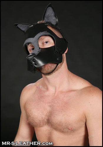 Mr. S Leather Howler Muzzle Dark grey
