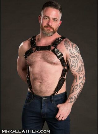 Mr. S Leather Trojan Body Harness Latigo Brass Small / Medium