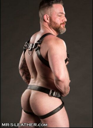 Mr. S Leather Trojan Jock Latigo Silver Small / Medium