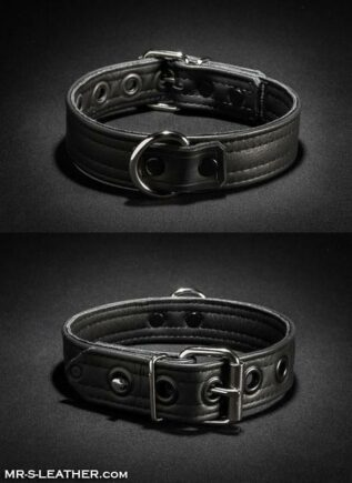 Mr. S Leather Puppy Collar Grey