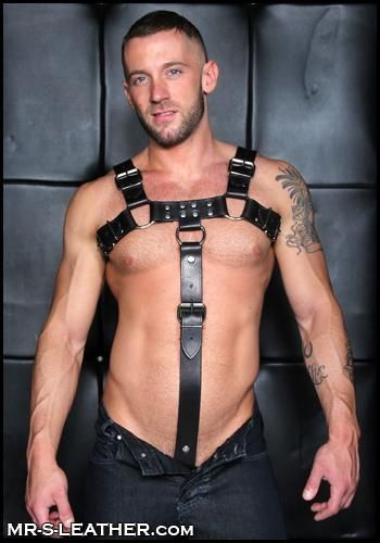 Mr. S Leather Cockstrap for Bulldog Harness Latigo Black Made to Fit