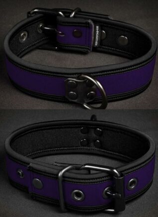 Mr. S Neoprene Puppy Collar Purple Large/Extra large