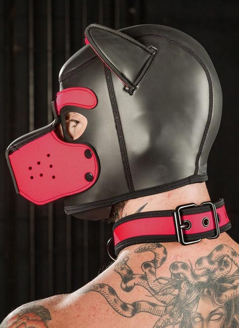 Mr. S Neoprene Puppy Collar Pink Large/Extra large
