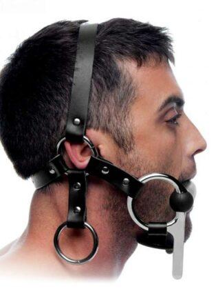 Master Series Steed Head Harness