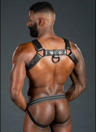 Mr. S Leather Dark Room Bulldog Harness Black Large/Extra large