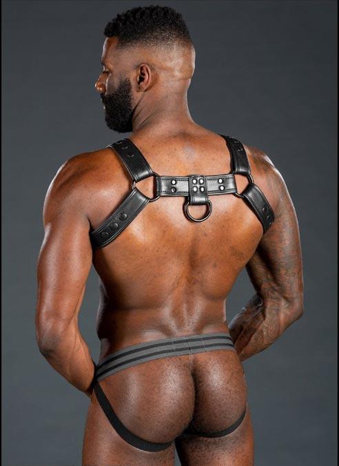 Mr. S Leather Dark Room Bulldog Harness Black Large/Extra large