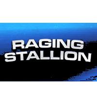 Raging Stallion Gear