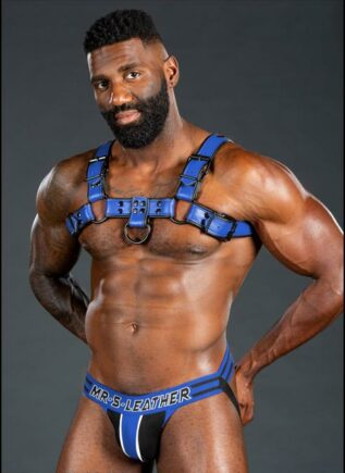 Mr. S Leather Dark Room Bulldog Harness Blue Small / Medium