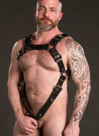 Mr. S Leather Trojan Body Harness Cockstraps Latigo Brass Standard