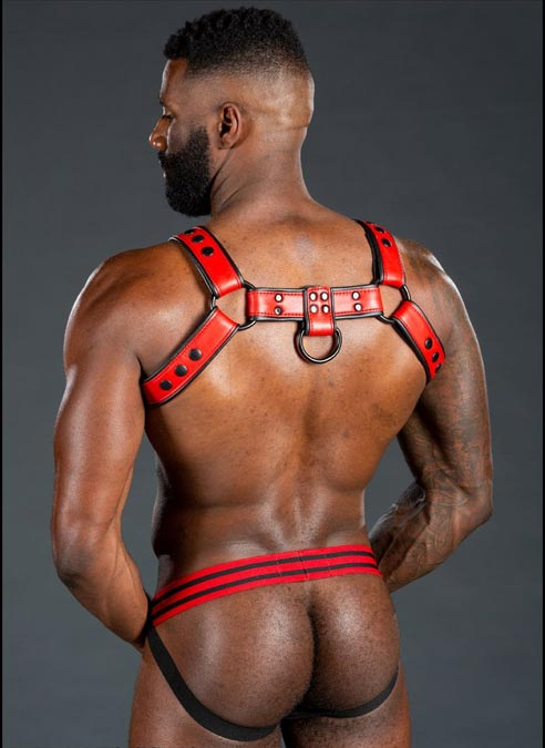 Mr. S Leather Dark Room Bulldog Harness Red Large/Extra large