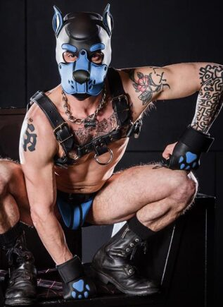Mr. S Leather Open Paw Puppy Glove Cobalt blue
