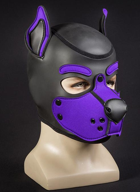 Mr. S Neo K9 Hood Purple Small