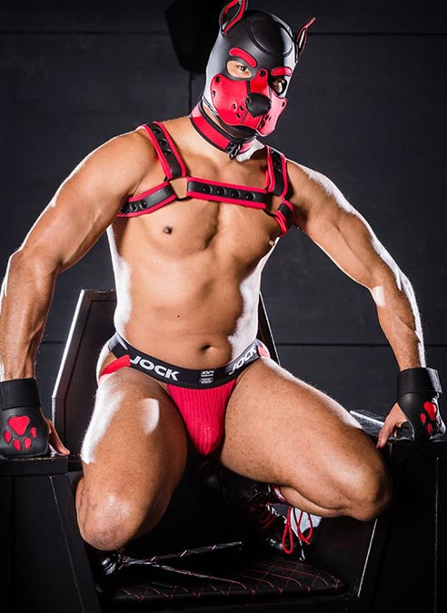 Mr. S Leather Open Paw Puppy Glove Red