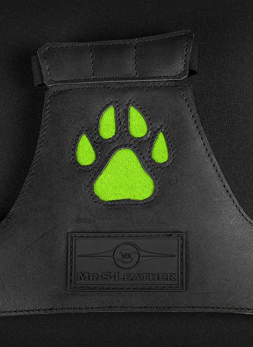 Mr. S Leather Open Paw Puppy Glove Lime