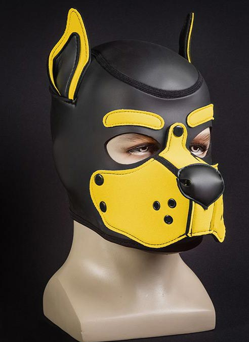 Mr. S Neo K9 Hood Yellow Small