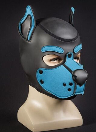 Mr. S Neo K9 Hood Aqua Large
