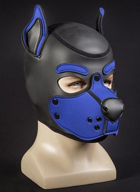 Mr. S Neo K9 Hood Royal Blue Medium