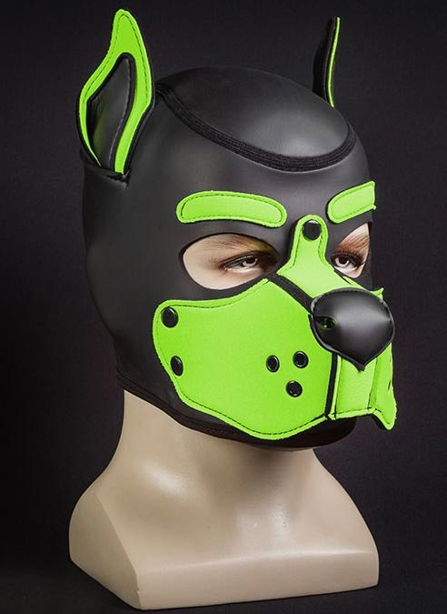 Mr. S Neo K9 Hood Lime Small