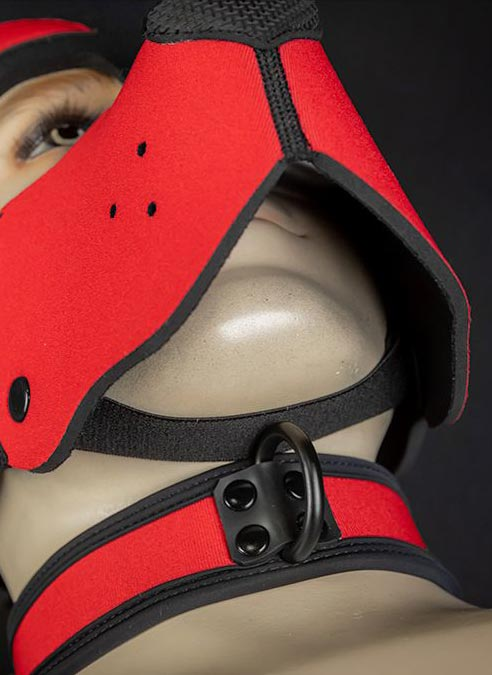 Mr. S Neoprene WOOF! Head Harness Red
