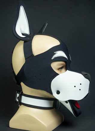 Mr. S Neoprene WOOF! Head Harness White