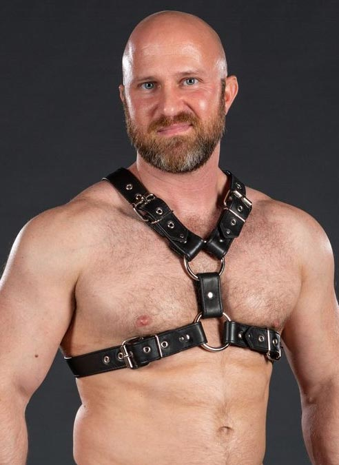 Mr. S Leather English Top Buckle Harness Garment Leather Small / Medium