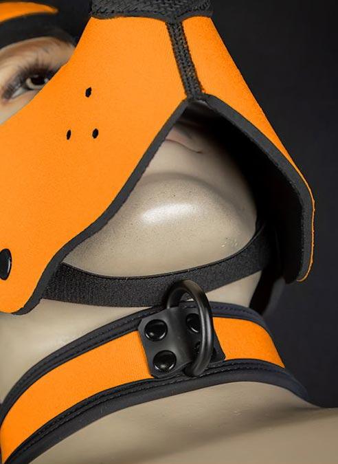 Mr. S Neoprene WOOF! Head Harness Orange