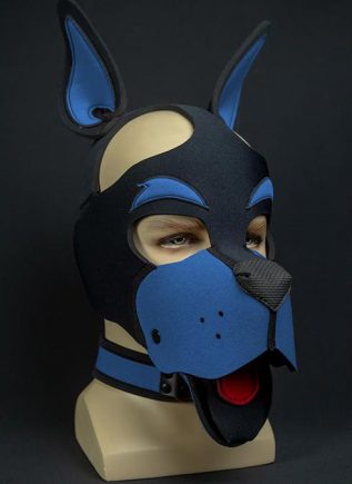 Mr. S Neoprene WOOF! Head Harness Cobalt blue