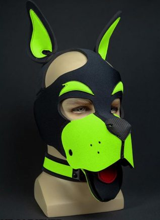 Mr. S Neoprene WOOF! Head Harness Lime