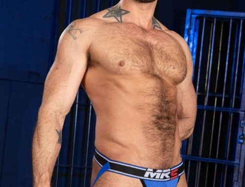 Big Bulge Collection by Mr. S Leather
