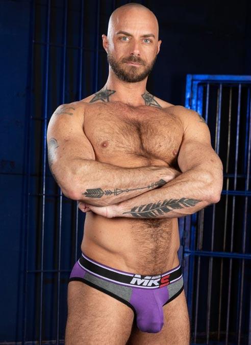 Mr. S Big Bulge Brief Purple Extra large