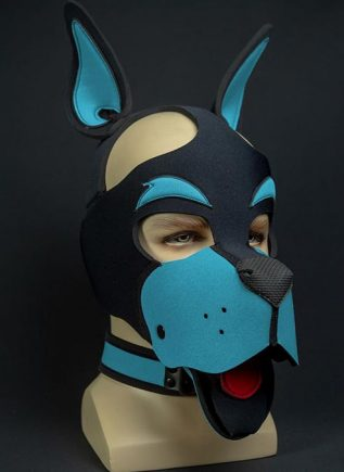 Mr. S Neoprene WOOF! Head Harness Aqua