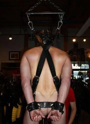 Mr. S Leather Suspension Harness