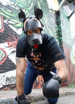 Mr. S Neoprene WOOF! Muzzle with Red Tongue