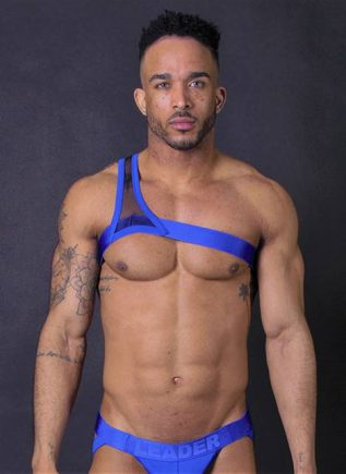 Leader Gladiator Harness Black Small